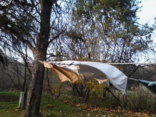 Best way to tell wind directions: dry your clothes on the line!