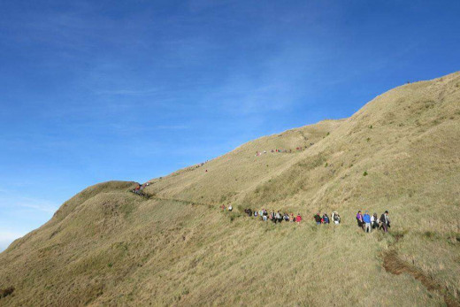 Grassland summit at Mount Pulag