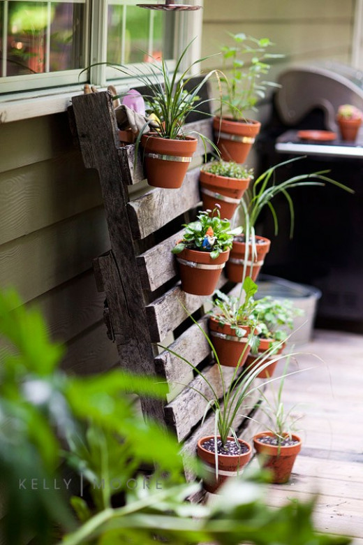 Use an old discarded pallet to create your vertical garden.