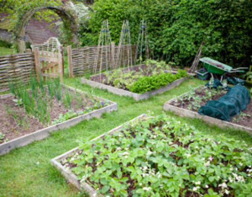 Unique garden ideas HubPages