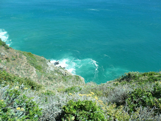 The view from the top of Chapman's Peak