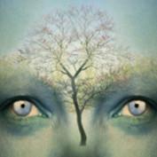 MirandaStork profile image