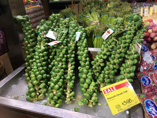 Yes, those are brussels sprouts, and the weight of the stalk goes towards the price.