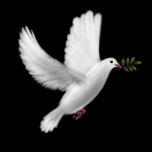 Dove = symbolism for peace = metaphor