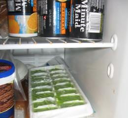 Pureed peas in plastic wrap in freezer
