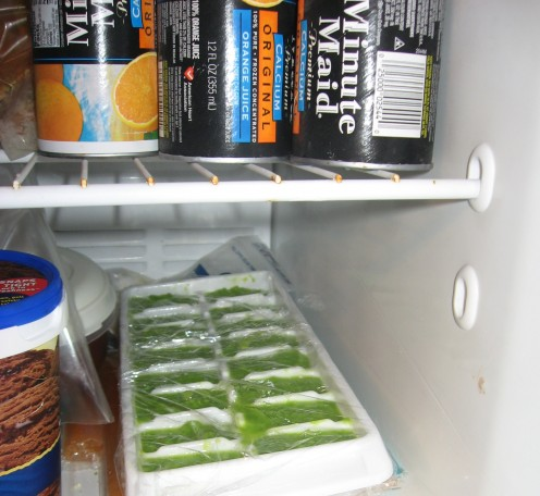 Pureed peas in plastic wrap in freezer