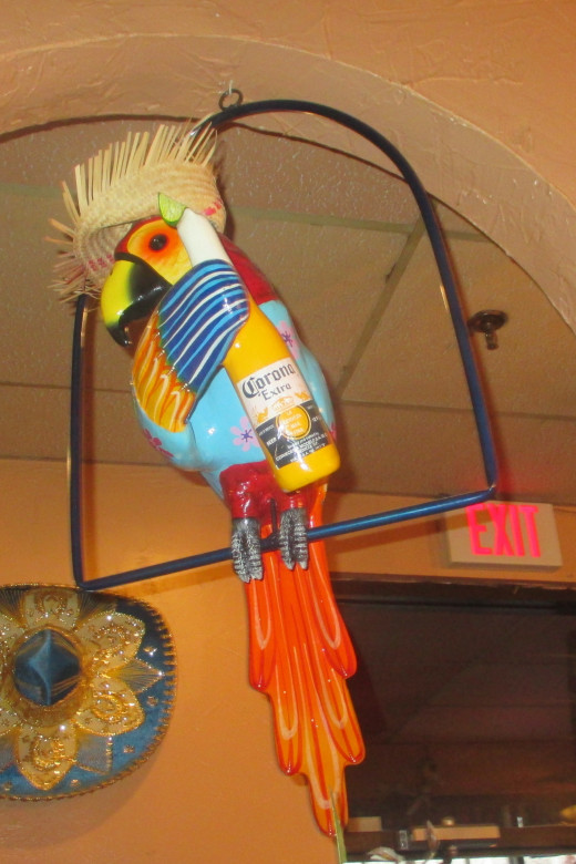 Partying parrot is part of decor in Mexican restaurant. - Photo by George Sommers