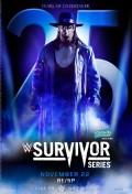 WWE Surivor Series 2015 Review!
