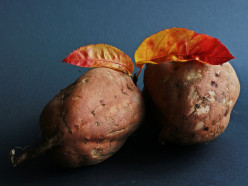 Best Sweet Potato Recipes - Fritters, Grilled, Pie, Soup, Even Dog Treats