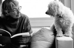 """Mary Oliver's """"Reckless Poem"""""""