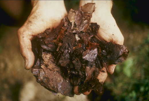 Compost, ready to use in your garden or on plants