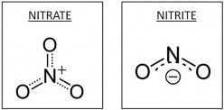 Aquarium Nitrate FAQ