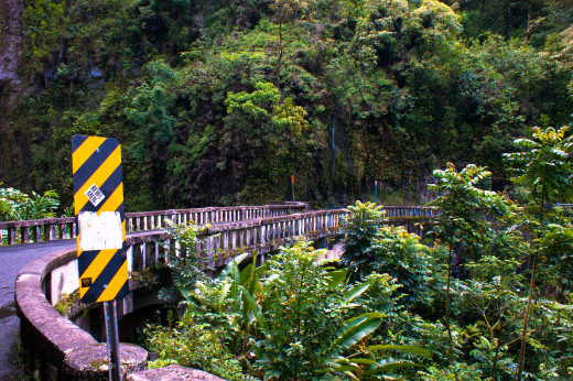 Bridge on Hana Highway