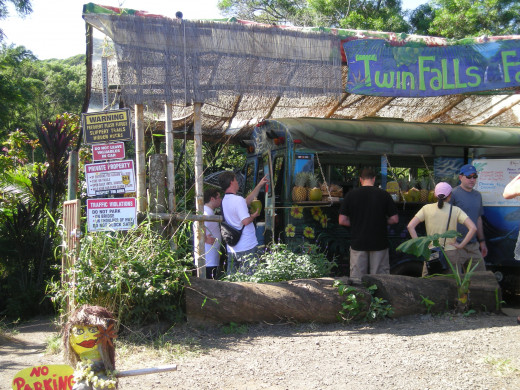 Snack stand at Twin Falls