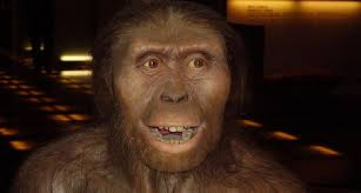 Hominds