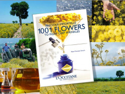 L'Occitane Immortelle DEBUNKED!