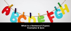 What is a Sentence? Types & Examples of Various Sentences