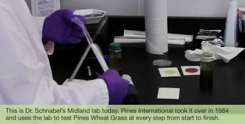 Pines International research lab