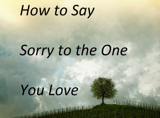 Nice Being Able To Say Sorry To Someone You Love May Not Always Be Easy, But