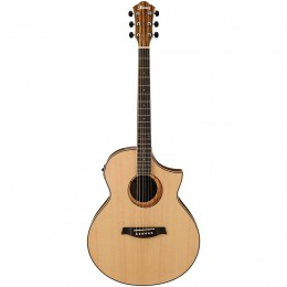 Ibanez Exotic Wood Acoustic-Electric Guitar