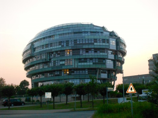 International Neurocience Institute