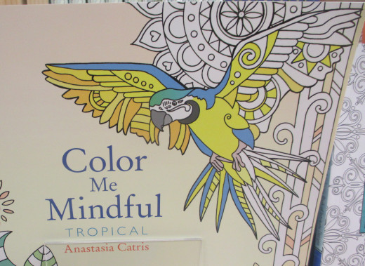 Adult coloring books are all the rage these days, and what better subject to color than a parrot? - Photo by George Sommers