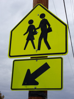 How parents are endangering their kids...and themselves: Traffic Safety-Crosswalks