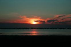 The Morning Glory (Poem)