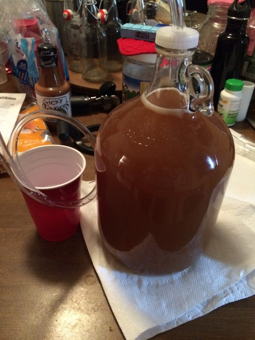 Here's my first batch of hard cider bubbling away right after I added my yeast.
