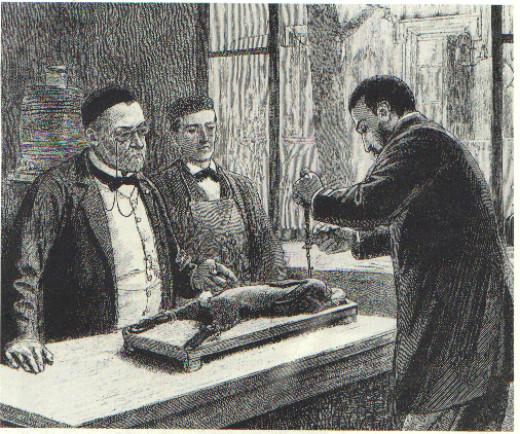 Pasteur treating rabies