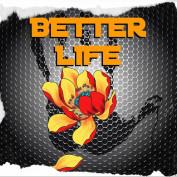 blifeproject profile image