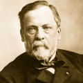 Louis Pasteur-His Life and Discoveries
