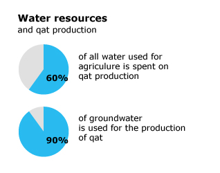 Water Resources and Qat Production in Yemen