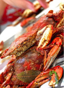 Where to get Crabs in Baltimore