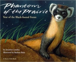 Phantom of the Prairie: Year of the Black-Footed Ferret by Jonathan London