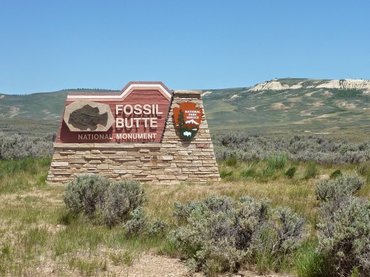 Fossil Butte National Monument image credit: http://travelsofthemercury.blogspot.com/