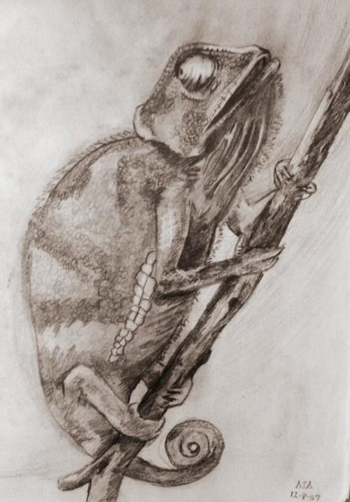 Pencil and paper sketch I did a few years back.