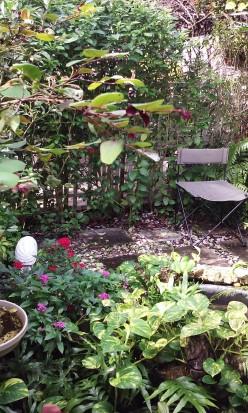 My Backyard Retreat