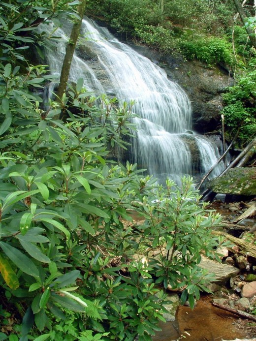 Tropical waterfall in Pisgah National Forest.