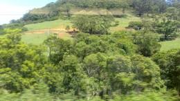 The bush and farming still figure large in the Australian identity.