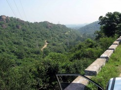 Kalakkad-Mundamthurai Tiger Reserve