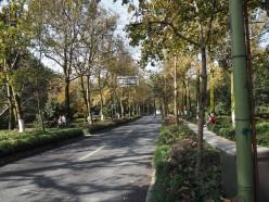 Sight Seeing in Hangzhou China