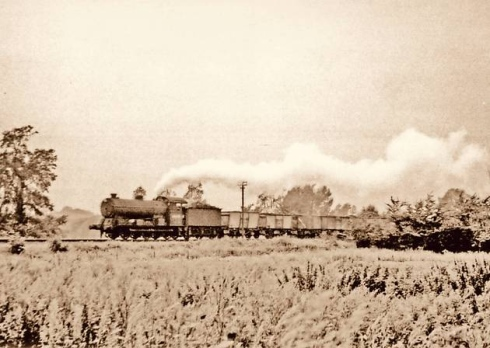 Albert drove a train just like this on the Bures and Crab and Winkles lines from around 1922. In fact, this photo could well include him.
