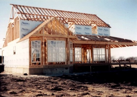 We began to get excited when the windows and roof trusses went up on the house