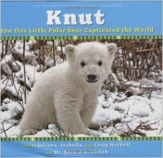 Knut:  How One Little Polar Bear Captivated the World -- Narrative Nonfiction Books for Kids