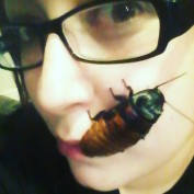 CrazyReptileLady profile image