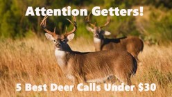Five Best Doe In Heat and Buck Calls for the Cheap Hunter...All Under $30