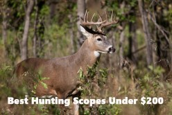 Best 3 Deer Rifle Scopes for the Cheap Hunter, Under $200