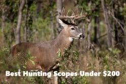 Best 3 Deer Rifle Scopes for the Cheap Hunter, Under $200