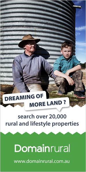 A youth in the farm, I guess with his father, dreaming his own dreams, the picture says more land, this could also have been my dream, if I had more land, I could have stayed in the farm all my life.